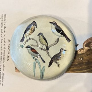 paperweight with birds