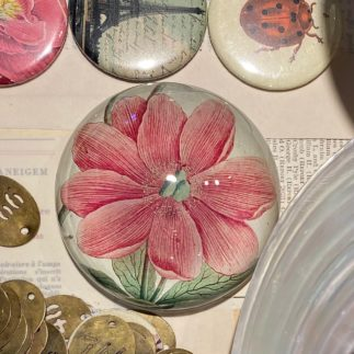 Pink Floral John Derian Paperweight